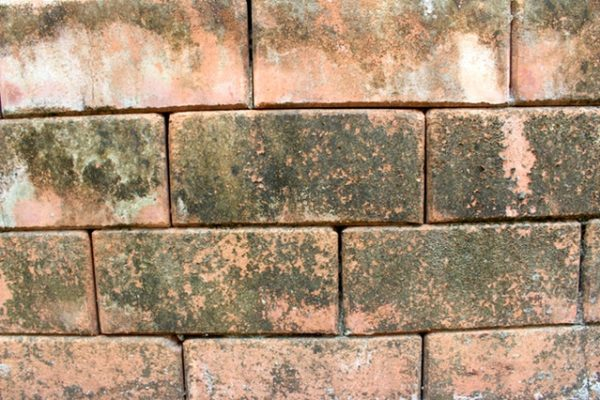 closeup of Reclaimed Brick